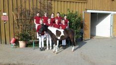 Gruppenbild mit Pony: Vereinsmeisterschaft Jungzüchter Havelland und Ruppiner Schweiz